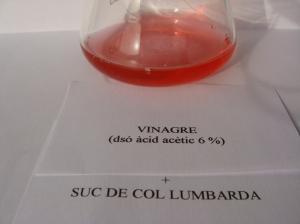 vinagre-1