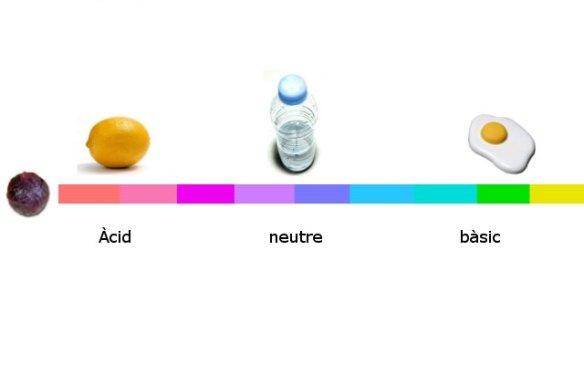 Rang colors pren l'extracte de col lumbarda com a indicador de pH