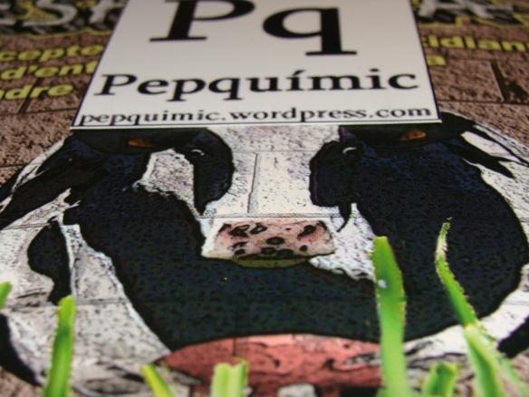 vaca, Pq