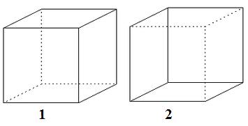 2 orientacions Necker