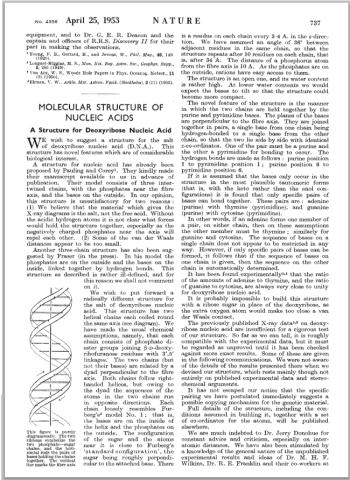 nature_1953_DNA