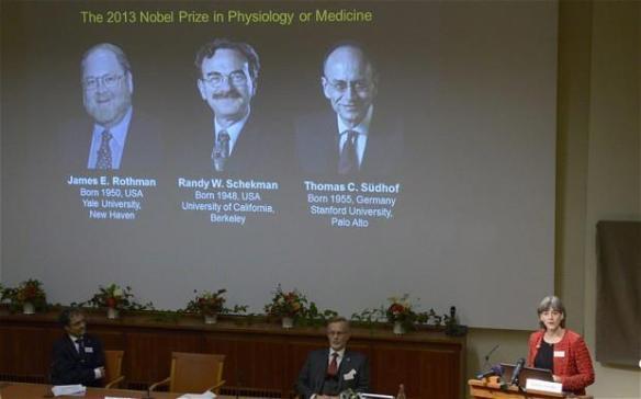 Anunci dels guardonats amb el Nobel de Medicina o Fisiologia 2013. Stockholm, Suècia; 07/10/13. Foto: REUTERS